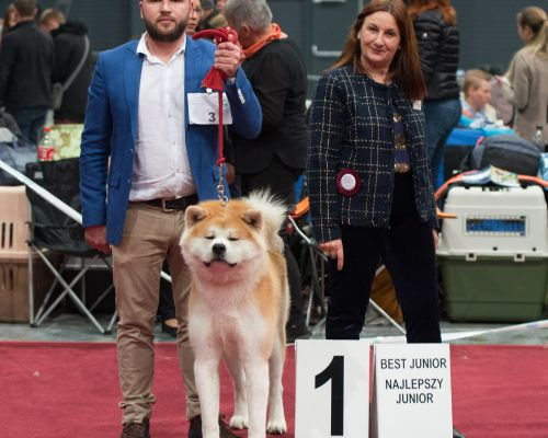 Club Dog Show Poland 2018